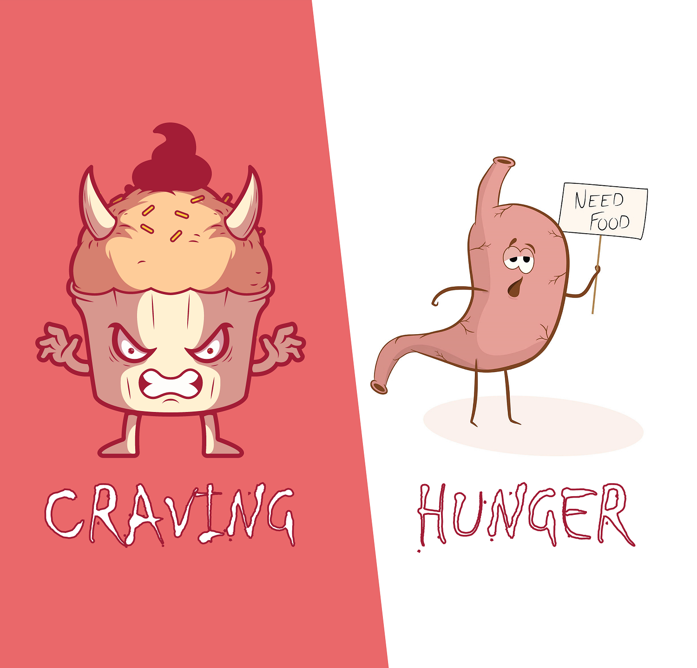 Craving Vs Hunger